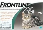 frontline flea protection for cats