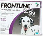 Frontline flea protection for dogs
